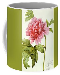 Paeonia Suffruticosa Coffee Mug