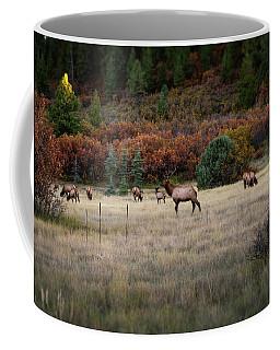 Coffee Mug featuring the photograph Pagosa Autumn Elk by Jason Coward