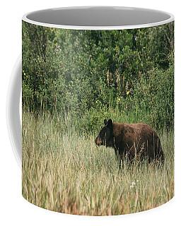 Pagosa Momma Bear Coffee Mug