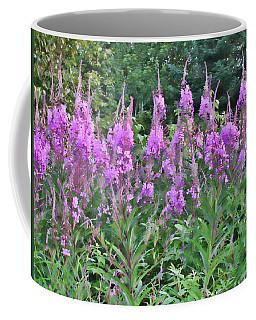 Painted Fireweed Coffee Mug