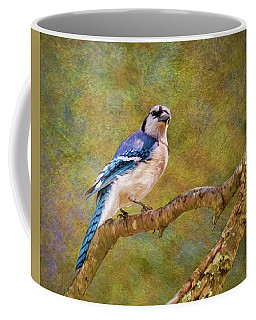 Painted Jay Coffee Mug