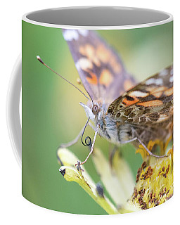 Coffee Mug featuring the photograph Painted Lady Proboscis 1 by Brian Hale