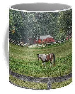 1005 - Painted Pony In Pasture Coffee Mug