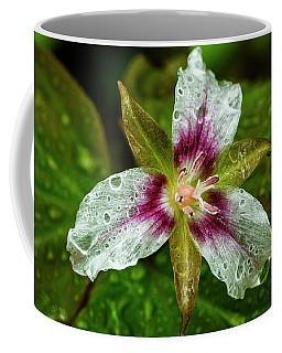 Painted Trillium With Raindrops Coffee Mug
