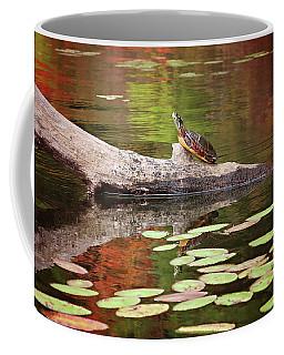 Painted Turtle Coffee Mug