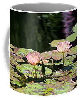 Painted Waters - Lilypond Coffee Mug
