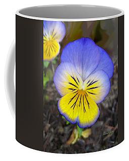 Painting Of Pansey Flower Coffee Mug