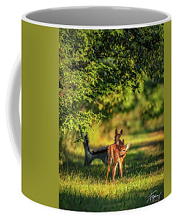 Pair Of Baby Deer Coffee Mug