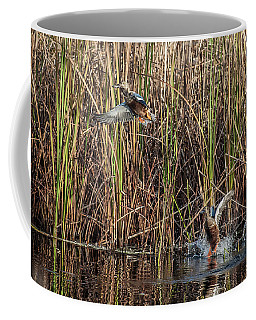 Pair Of Blue-winged Teal Take Flight Coffee Mug