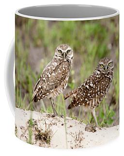 Pair Of Burrowing Owls Coffee Mug