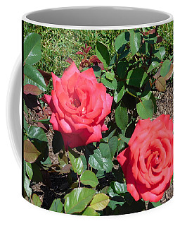 Pair Of Red Roses Coffee Mug