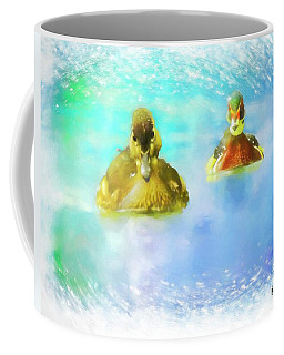 Pair Of Wood Ducks Swimming Toward Camera. Coffee Mug