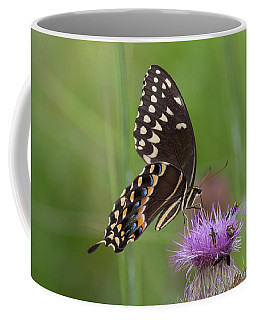 Palamedes Swallowtail And Friends Coffee Mug