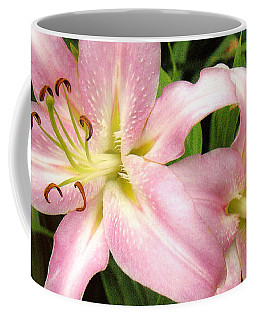 Pale Pink Beauties Coffee Mug