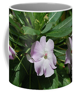 Pale Pink Impatient Flowers In Bloom Coffee Mug by DejaVu Designs