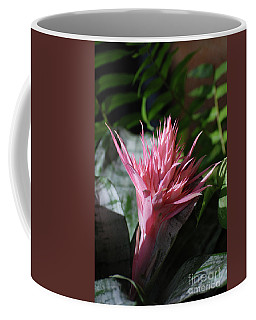 Pale Pink Tropical Flower With Spikes Coffee Mug by DejaVu Designs