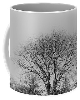 Pale Shades Coffee Mug