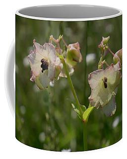 Pale Umbrella Wort Coffee Mug