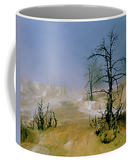 Palette Springs Coffee Mug