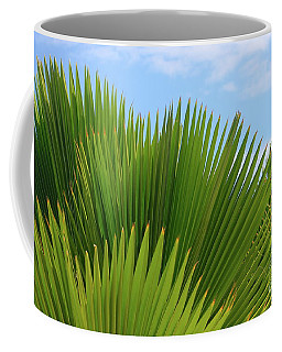 Coffee Mug featuring the photograph Palm Fans by The Art of Alice Terrill