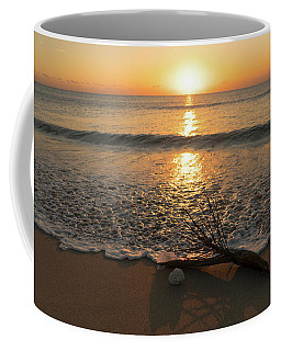 Palm Frond Coral Sunrise Delray Beach Florida Coffee Mug