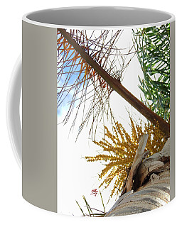 Palm Sky View Coffee Mug by Linda Hollis