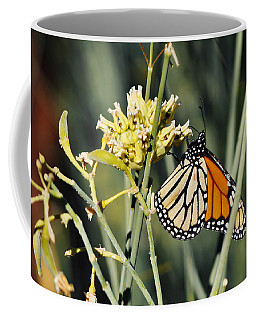 Coffee Mug featuring the photograph Palm Springs Monarch by Kyle Hanson