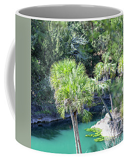 Palm Tree Blue Pond Coffee Mug