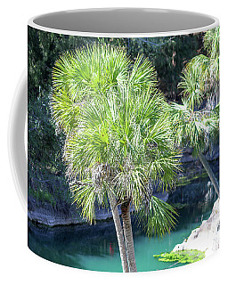 Coffee Mug featuring the photograph Palm Tree Blue Pond by Raphael Lopez