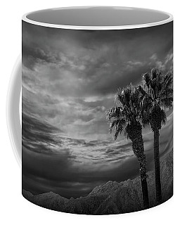 Coffee Mug featuring the photograph Palm Trees By Borrego Springs In Black And White by Randall Nyhof