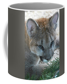 Coffee Mug featuring the photograph Palus by Laddie Halupa