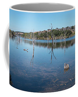 Panoramic View Of Large Lake With Grass On The Shore Coffee Mug