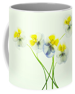 Coffee Mug featuring the photograph Pansies 1 by Rebecca Cozart