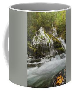 Panther Creek Falls In Fall Season Coffee Mug