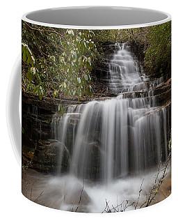 Panther Falls Coffee Mug
