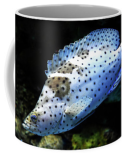 Coffee Mug featuring the photograph Panther Grouper by Scott Cordell