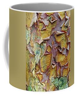 Paperbark Maple Tree Coffee Mug
