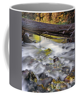 Coffee Mug featuring the photograph Papoose Creek by Leland D Howard