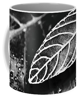 Parallel Botany #8444 Coffee Mug