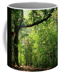 Paris Mountain State Park South Carolina Coffee Mug