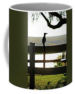 Park Roadrunner Coffee Mug