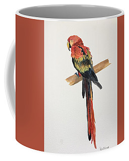 Parrot Coffee Mug by Christine Lathrop