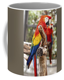 Parrot Colors Coffee Mug