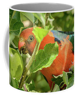 Coffee Mug featuring the photograph  Parrot In Apple Tree by Werner Padarin