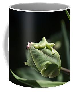 Parrot Tulip Bud Coffee Mug