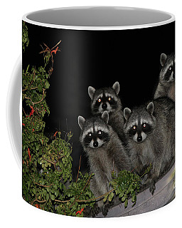 Party Of Five On The Roof Top Coffee Mug by Nina Prommer