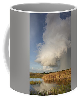 Passing Late Afternoon Rain Shower Coffee Mug