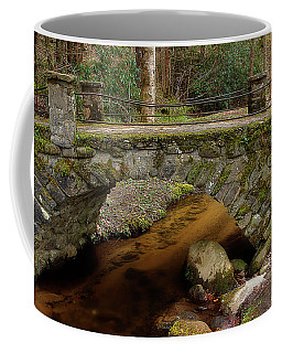 Coffee Mug featuring the photograph Passing Over Many Years by Mike Eingle