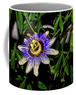 Passion Flower And Pod 002 Coffee Mug