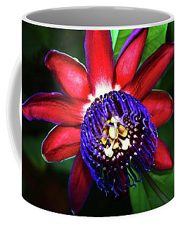 Coffee Mug featuring the photograph Passion Flower by Anthony Jones